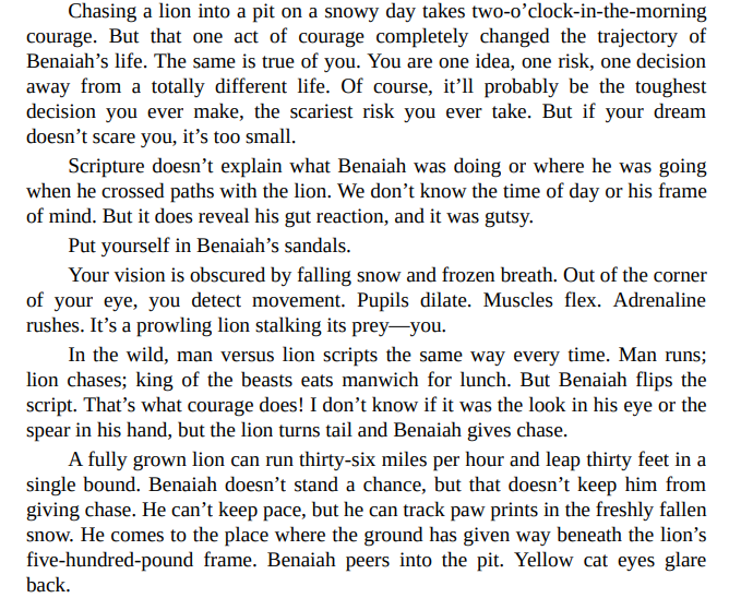 Chase the Lion by Mark Batterson